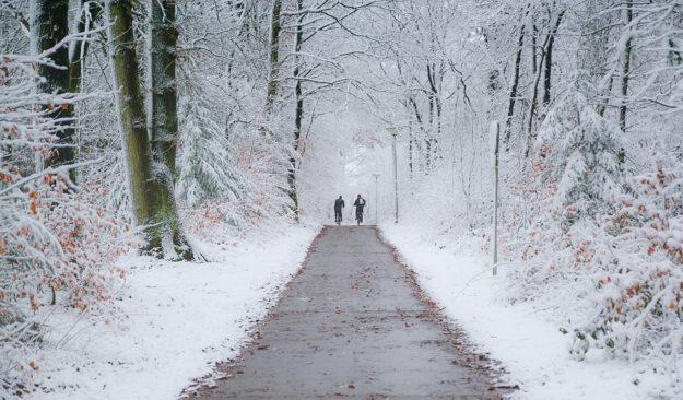 Nu kan du bli en vintercyklist